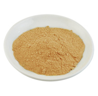Papaya Powder Fruit Extract