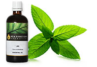 Peppermint Japanese Organic Essential Oil