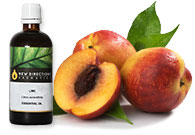 Peaches & Cream Fragrance Oil
