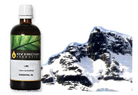 Mountain Rain Fragrance Oil